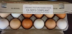 Organic eggs have more variation in shell color and deep yellow/orange yolks.